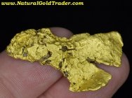 13.04 Gram Sonora Mexico Gold Nugget
