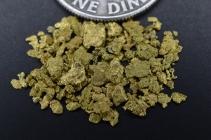 1 Gram Montana Placer Gold Paydirt Bag