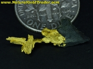 0.33 Gram California Gold & Schist Specimen