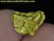 2.05 Gram Chicken Creek Alaska Gold Specimen