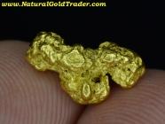 1.79 Gram Northern Nevada Gold Nugget