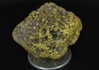 23.2 Gram Idaho Gold & Quartz