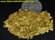 0.25 ozt. 7.77 Grams of Oregon Placer Gold