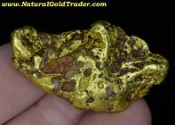 49.19 Gram Arizona Gold Nugget with Quartz