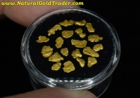 1.46 Gram (20) California Placer Gold Nuggets