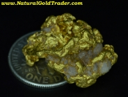 12.92 Gram Montana Gold Nugget with Quartz