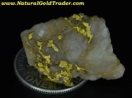 4.41 Gram Kalgoorlie Australia Gold & Quartz