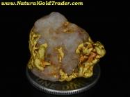 6.48 Gram Kalgoorlie Australia Gold & Quartz