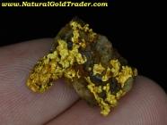 6.81 Gram W-Australia Gold/Quartz/Hematite