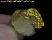 7.25 Gram Western Australia Gold & Quartz