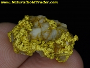 10.13 Gram Australia Gold & Quartz Specimen