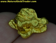7.71 Gram Montana Placer Gold Nugget