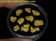 11.05 Grams (10) Helena Montana Gold Nuggets