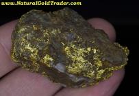 55.5 Gram California Gold & Quartz Specimen