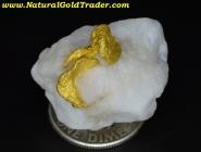12.10 Gram Nullagine Australia Gold & Quartz