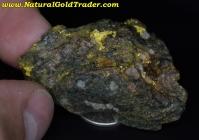 17.6 Gram Nullagine Aus. Gold/Quartz/Schist