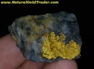 24.5 Gram Nullagine Australia Gold & Quartz
