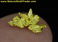0.57 Gram Eaglesnest California Gold Specimen