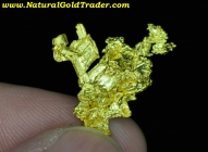 4.15 Gram Eaglesnest California Gold Specimen