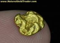 0.93 Gram Baker Oregon Gold Nugget