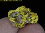 6.04 Gram Kalgoorlie Australia Gold & Quartz