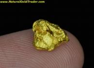 1.66 Gram Western Australia Gold Nugget