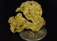 12.07 Gram California Gold Specimen