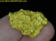 13.55 Gram Baker Oregon Gold Nugget