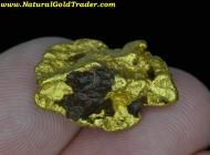 14.87 Gram California G. Nugget with Hematite