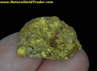 10.51 Gram Baker Oregon Gold & Quartz