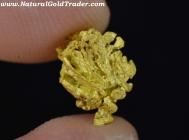 1.19 Gram Nevada Gold Specimen