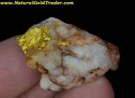 16.98 Gram Western Australia Gold & Quartz