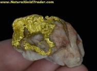 24.35 Gram Western Australia Gold & Quartz