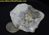 33.7 Gram Arizona Gold & Quartz Ore Specimen