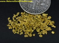 1.35 Grams of Little River Tennessee Placer Gold