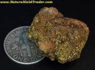 11.10 Gram Tuscarora Nevada Gold Specimen