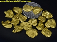 .5 ozt+ 15.65 Grams (16) Yukon Gold Nuggets