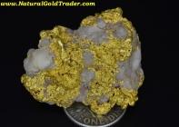 42.38 Gram Helena Montana Gold & Quartz