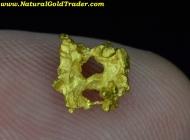 1.03 Gram W. Australia Gold Nugget Crystal