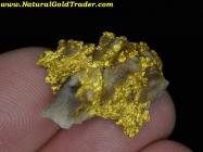 8.37 Gram Mariposa California Gold & Quartz
