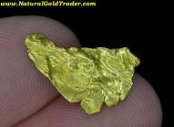 1.10 Gram Eastern Oregon Foil Gold Nugget