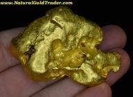 303.8 Gram Victoria Australia Gold Nugget