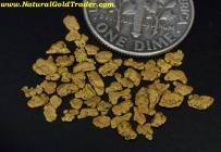 1.47 Grams of Alaska Gold Nuggets/Pickers