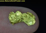 .58 Gram Chicken Alaska Gold Specimen