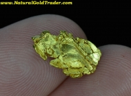 1.60 Gram Chicken Alaska Gold Specimen