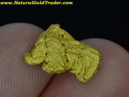 1.86 G. Golden Triangle Mexico Gold Nugget