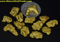 .5 ozt+ 15.56 Grams (13) Yukon Can Gold Nuggets