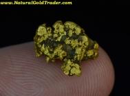 2.74 Gram Calaveras Co. California Gold Nugget