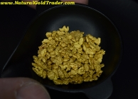 .25 ozt+ 7.86 G. Nolan Creek AK Gold Nuggets