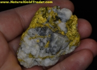 138.31 Gram Mariposa California Gold & Quartz